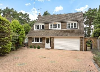 Thumbnail 4 bed detached house for sale in Diamond Hill, Camberley, Surrey