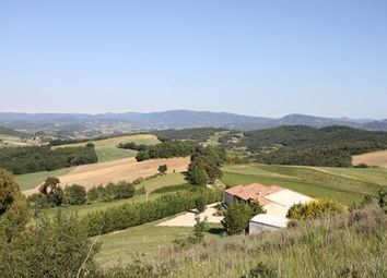 Thumbnail Farm for sale in Alaigne, Aude, France