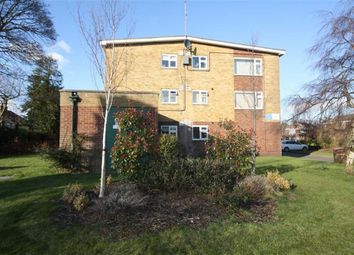 Thumbnail 1 bed flat to rent in Mill Beck Court, Mill Beck Lane, Cottingham