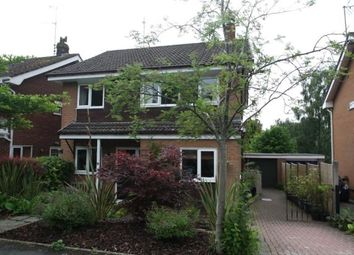 Thumbnail 4 bed detached house to rent in Orchard Way, Kelsall, Cheshire
