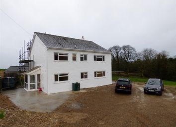 Thumbnail 4 bed detached house to rent in Plasybeili, Login, Whitland