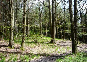 Thumbnail Land for sale in Rushall Lane, Wimborne, Dorset