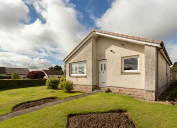 Thumbnail 3 bed bungalow for sale in Berrydale Road, Blairgowrie