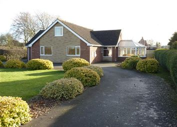 Thumbnail 4 bed detached bungalow for sale in Aylesby Lane, Healing, Grimsby