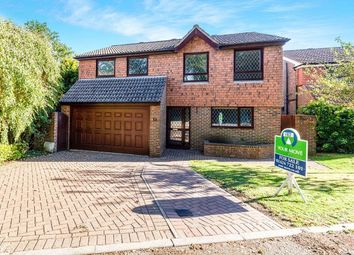 Thumbnail 4 bed detached house to rent in Highwoods Avenue, Bexhill-On-Sea