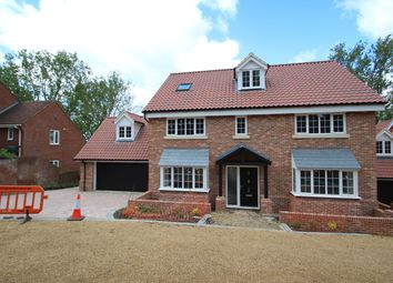 Thumbnail 6 bedroom detached house for sale in Hadleigh Road, Ipswich, Ipswich