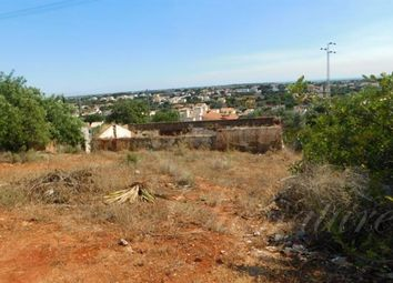 Thumbnail Land for sale in Vale Judeu, Loule, Portugal