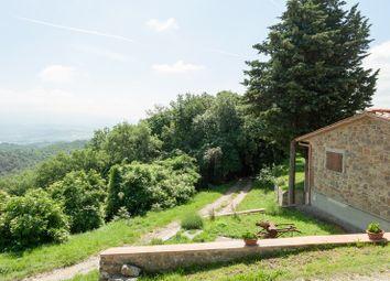 Thumbnail Farm for sale in 21047 Agriturismo Nel Chianti, Figline E Incisa Valdarno, Florence, Tuscany, Italy