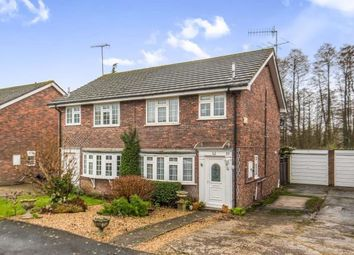 Thumbnail 3 bed semi-detached house for sale in Milford, Godalming, Surrey