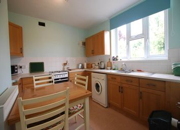 Thumbnail 4 bed property to rent in Alderwood Road, Eltham, London