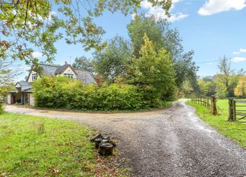 Thumbnail 3 bed detached house for sale in St. Helena Lane, Streat, Hassocks, East Sussex