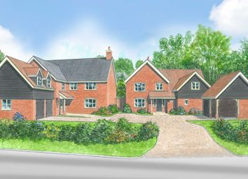 Thumbnail 4 bed detached house for sale in Church Road, Wreningham