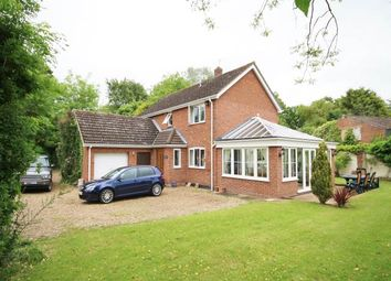 Thumbnail 4 bed property to rent in Common Road, East Tuddenham, Dereham