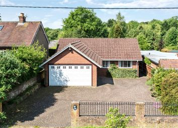 Thumbnail 4 bedroom detached bungalow for sale in Bousley Rise, Ottershaw, Surrey