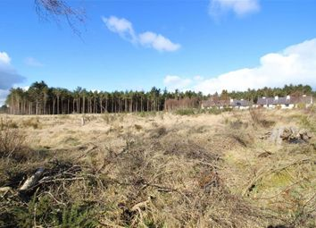 Thumbnail Land for sale in Arboll Woods Development, By New Geanies, Tain