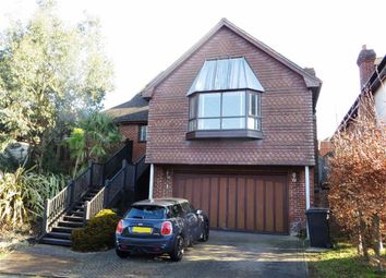 Thumbnail 4 bed detached house for sale in Washington Avenue, St Leonards-On-Sea, East Sussex
