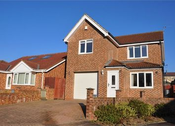 Thumbnail 4 bed detached house to rent in Pilkington Way, Auckland Park, Bishop Auckland