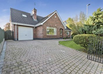 Thumbnail 4 bed detached house for sale in Old Grand Jury Road, Saintfield, Down