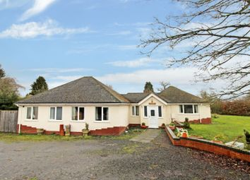 Thumbnail 4 bed detached bungalow for sale in Chavel, Shrewsbury