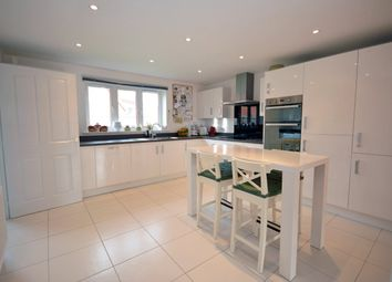 Thumbnail 4 bedroom detached house for sale in Summer Meadow, Cranbrook, Exeter