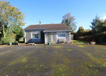Thumbnail 3 bedroom bungalow to rent in Skinburness, Wigton