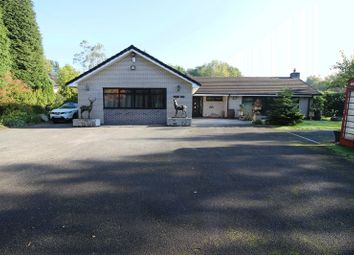 Thumbnail 4 bed detached bungalow for sale in Camrose Hill, Rudyard, Staffordshire