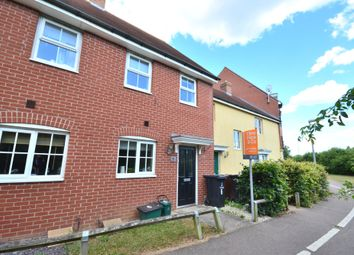 2 bed semi-detached house to rent in Thomas Benold Walk, Colchester CO2