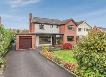Thumbnail 4 bed detached house for sale in Bannview Heights, Banbridge, County Down