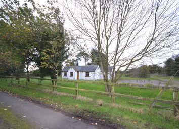 Thumbnail Property for sale in Carbury