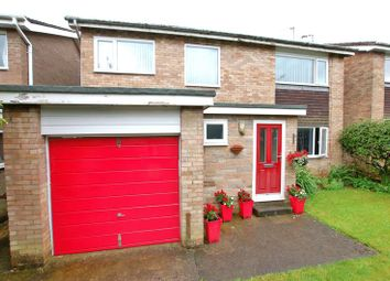 Thumbnail 4 bed detached house for sale in Dene Road, Wylam