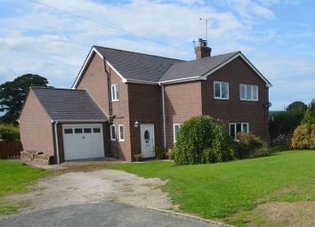 Thumbnail 4 bed detached house for sale in Crown Estate, Lloc, Holywell