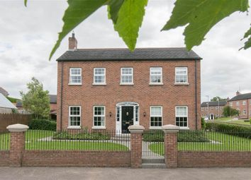 Thumbnail 4 bed detached house for sale in 1, Royal Hill, Lisburn