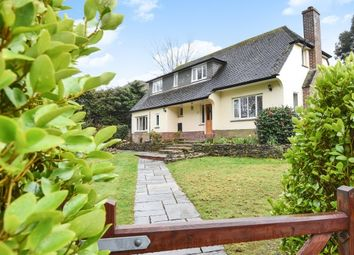 Thumbnail 4 bed property to rent in Wood Lane, Milford On Sea, Lymington