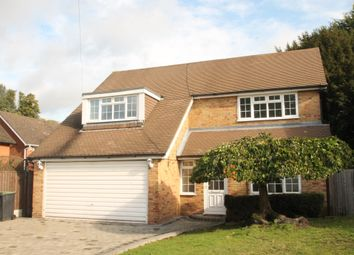 Thumbnail 4 bed detached bungalow to rent in The Summit, Loughton