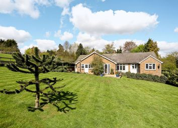 Thumbnail 5 bedroom bungalow for sale in Willowdene, Mill Lane, Watton At Stone, Hertford