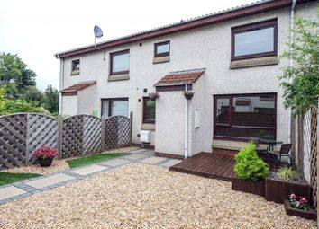 Thumbnail 1 bed terraced house for sale in 6 Juniper Place, Juniper Green