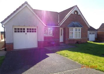 Thumbnail 3 bedroom detached bungalow to rent in King James Drive, Tullibody, Alloa