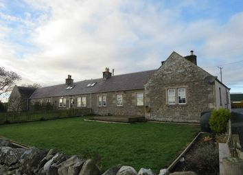 Thumbnail 3 bed terraced bungalow for sale in 3 Hassendean Farm Cottages, Hawick