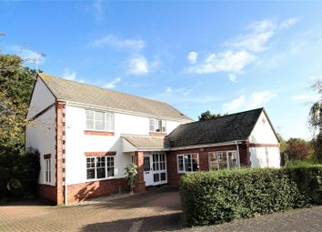 Thumbnail 4 bed detached house for sale in Ditchingham Grove, Rushmere St. Andrew, Ipswich