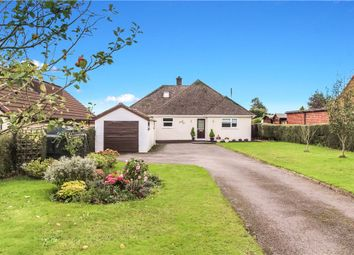 Thumbnail 5 bed detached bungalow for sale in Storridge Lane, Tytherleigh, Axminster, Devon