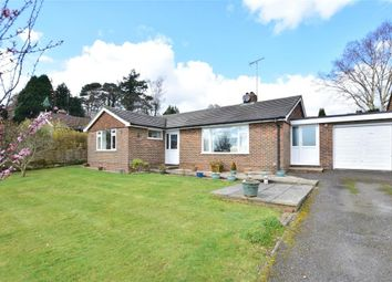 Thumbnail 3 bed bungalow for sale in Arun Vale, Coldwaltham, Pulborough, West Sussex