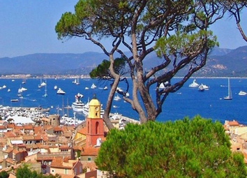 Thumbnail Commercial property for sale in St-Tropez, Var, France