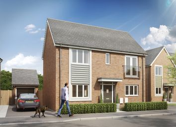 Thumbnail 3 bed detached house for sale in Carsington Road, Hilton