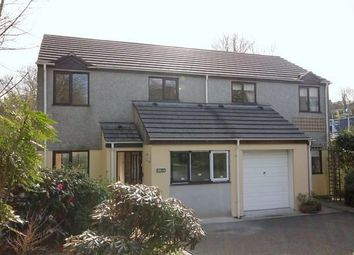 Thumbnail 4 bed detached house to rent in Town End, Browns Hill, Penryn
