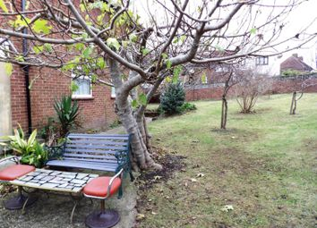 Thumbnail 2 bed semi-detached house to rent in Mountfields, Hollingdean, Brighton