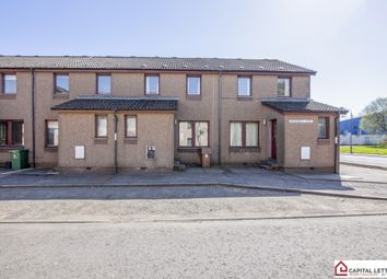 Thumbnail 4 bed flat to rent in Rosebery Terrace, Riverside, Stirling