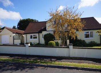 Thumbnail 4 bed detached house for sale in Wells, Somerset