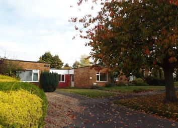 Thumbnail 2 bed bungalow to rent in Buriton Road, Winchester