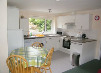 Thumbnail 3 bed detached bungalow to rent in Arwenack Avenue, Falmouth