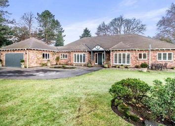 Thumbnail 4 bed bungalow for sale in Badger Road, Prestbury, Macclesfield, Cheshire